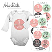 Modish Labels 12 Monthly Baby Stickers, Baby Girl, Pink, Mint, Arrows, Chevron, Tribal, Baby Book Keepsake, Photo Prop, Baby Shower Gift