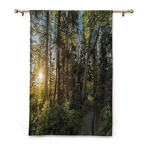 DONEECKL Extra Long Curtain Landscape National Park in Cape Breton Highlands Canada Forest Path Trees Tranquility Photo Children's Bedroom Curtain W36 xL72 Blue Green