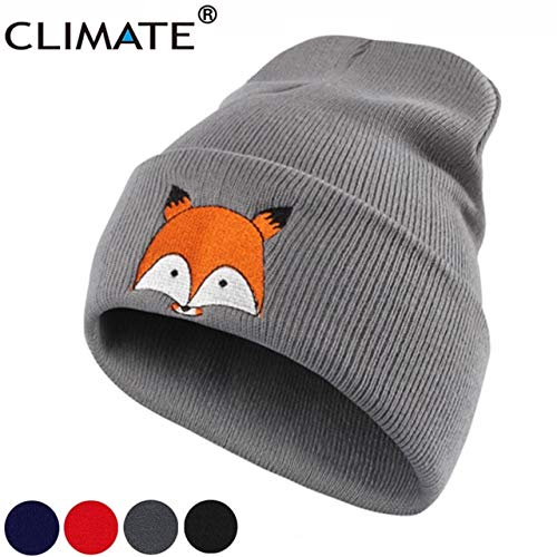 04fd4a4eed5 World 2 home Climate Women Girls Winter Warm Beanie Hat Cap New Cute Fox  Lovely Skulls Knitted Hat for Adult Teenagers Boy Girls Women  Amazon.in   Clothing ...