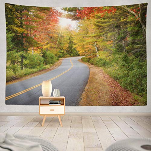 Aisiag Autumn Tree Tapestry, Wall Hanging Tapestry Winding Road Autumn Foliage New England Sun Rays Colorful Wall Tapestry Dorm Home Decor Bedroom Living Room in 80X60