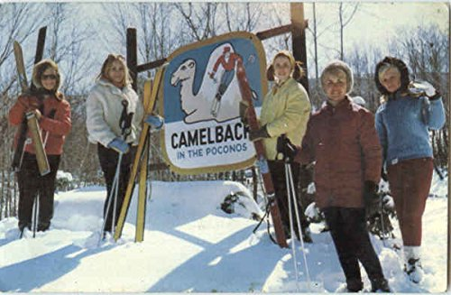 Greetings From Camelbackt Tannersville, Pennsylvania Original Vintage - Tannersville Pennsylvania