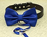 Royal Blue Dog ring bearer Collar, Pet Wedding, Handmade Bow Tie, Proposal