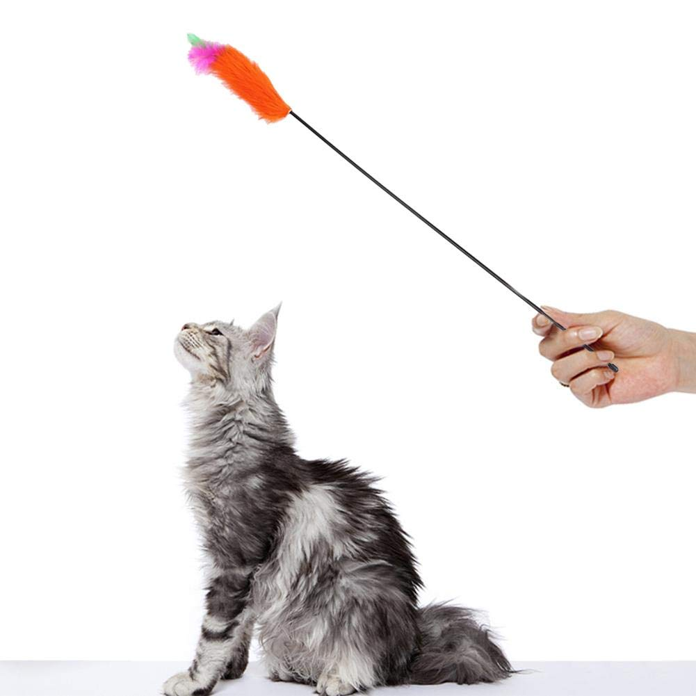 Domybest - Plumeros para Gato, caña de Pescar, Juguete de Plumas ...