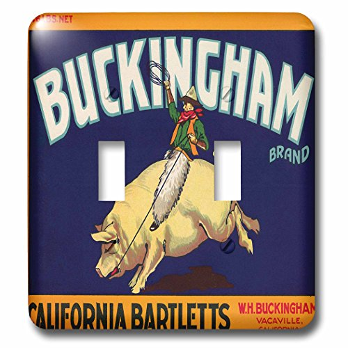 3dRose lsp_171140_2 Buckingham Brand California Bartletts Cowboy Riding a Pig Light Switch Cover