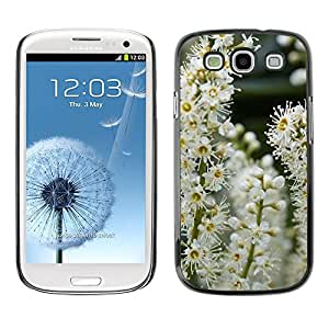 Hot Style Cell Phone PC Hard Case Cover // M00308945 Inflorescence Flower Flowers Bush // Samsung Galaxy S3 S III SIII i9300