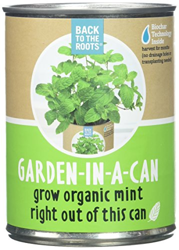 Back to The Roots Garden in A Can Grow Organic Mint, 0.38647 ()