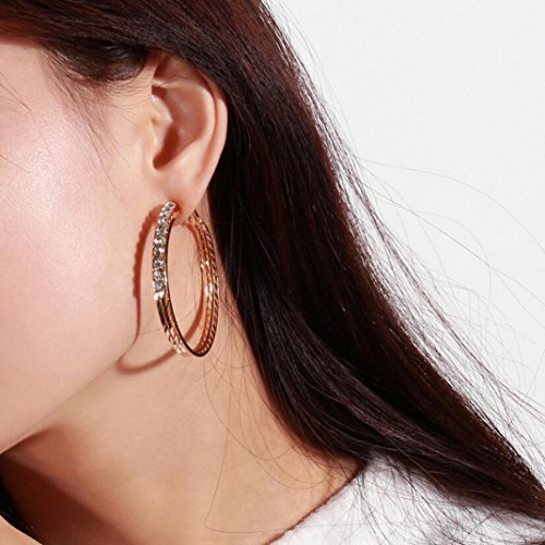 Earrings Studs for Women, Staron 1 Pair Fashion Crystal Rounded Rhinestone Ear Clip Stud Earrings Elegant Eardrop Jewelry Gift - Screw Rhinestone Earrings Clip