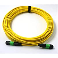 EB-LINK Fiber Optic Patch Cord Cable, MTP MPO-Style, 12 Strand, without Pins, 9/125,2 meter (6.5 ft.)