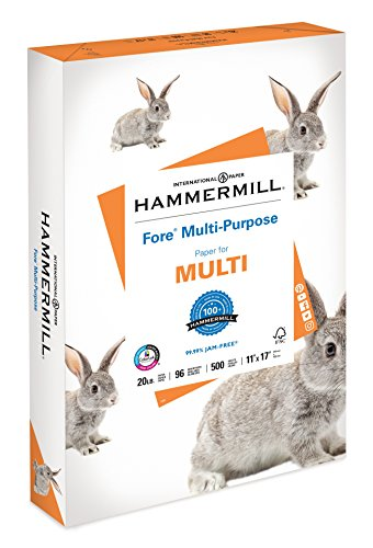 Hammermill Paper, Fore Multipurpose Paper, 11 x 17 Paper, Ledger Size, 20lb Paper, 96 Bright, 1 Ream / 500 Sheets (103192R) Acid Free Paper (Best Options Trading Newsletter)