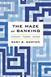img - for The Maze of Banking: History, Theory, Crisis book / textbook / text book