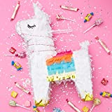 Sparkle and Bash Boho Fiesta Llama Party