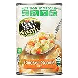 Health Valley Organic Soup - Chicken Noodle, No Salt Added - Case of 12 - 15 oz.
