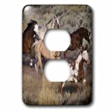 3dRose LLC lsp_93557_6 Usa, Oregon, Seneca, Ponderosa Ranch Horses Us38 Bja0382 Jaynes Gallery 2 Plug Outlet Cover