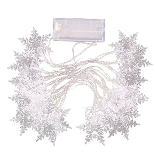 Led Snowflake Icicle String Lights in Florida - 8