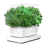 AeroGrow Miracle-Gro AeroGarden Harvest 2015 with Gourmet Herb Seed Pod Kit, White