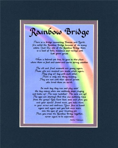 Dogs Rainbow Bridge - McDarlins Calligraphy Rainbow Bridge Dog Memorial Wall Decor Poem Pet Saying Bereavement Keepsake Gift