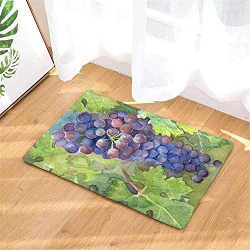 (FANNEE Watercolor Grape Fruit Door Mat, Entrance Carpet Shoe Scraper Machine Washable Carpet Door Mat, Dirt and Dust Absorber)