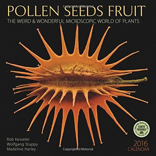 pollen seeds fruit 2016 wall calendar the weird wonderful microscopic world of plants by wolfgang stuppy 2015 07 22
