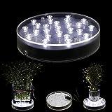 Acmee 6 Inch Acrylic Round LED Plate Light,25 LEDs Vase Base Light forTable Centerpiece Decoration. Bright White Vase illuminator. Battery Operated/USB Cable 2 functions(White Light)