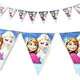 Frozzan Birthday Banner /Frozzan Theme/Frozzan Party/Birthday Party/FROZZAN Theme Banner Bunting Paper Garland