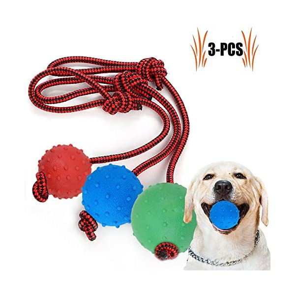 Legendog Dog Rope Ball, 3 Pcs Ball on a Rope Dog Toy Natural Elastic Solid Rubber Dogs Balls Chew Toys for Small Dogs (Multicolor-3PCS) 1