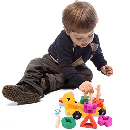 Pull Along Toy,Wooden Duck Toy with Educational Peg Puzzle for Toddlers' Shape & Color Sorting by Hero Selected (Image #5)