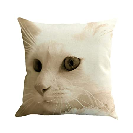 Remarkable Buimin Decorative Multi Color Eco Friendly Kawaii Kitty Download Free Architecture Designs Embacsunscenecom