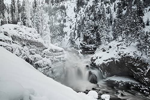 Amazon Com Yellowstone National Park Photo Winter At