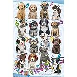 "Trends International Puppy Headphones Wall Poster 22.375"" x 34"""
