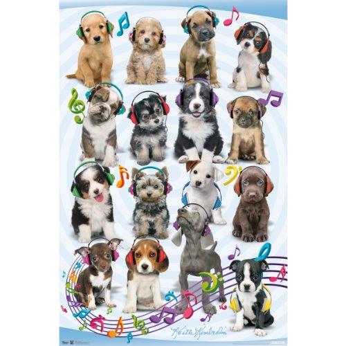 Trends International Puppy Headphones Wall Poster 22.375