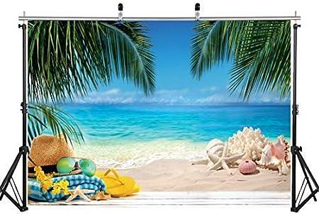 Aiikes 7x5ft 2 1mx1 5m Tropisch Strand Fotografie Kamera