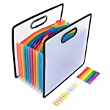 Expanding File Folder Organiser 12 Pockets A4 Portable Expandable File Document Holder Organizer with 2 Labels for Office/Home/Study Use, Strong Plastic Paperwork File Organiser