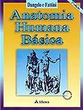 capa de Anatomia Humana Básica