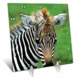 3dRose dc_9858_1 Desk Clock, Common Kenya Africa Zebra, 6 by 6-Inch For Sale