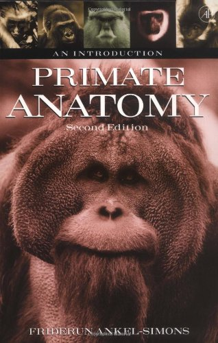 Primate Anatomy, Second Edition: An Introduction