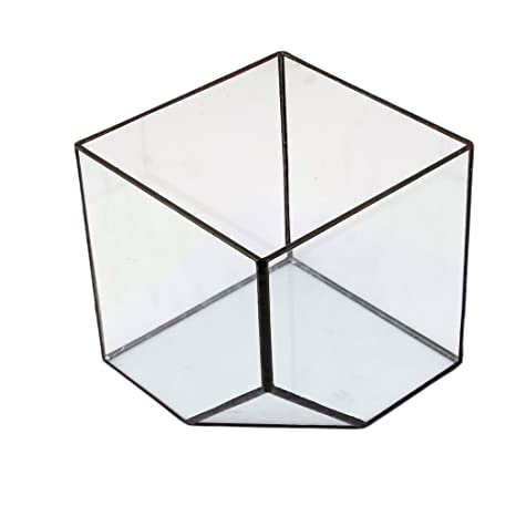 Glasterrarium Cube Fairy Gartenhaus Gewaechshaus Groesse L Amazon