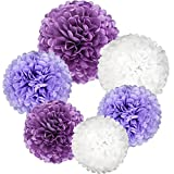 Yarssir Purple White Tissue Paper Pom Pom Flower for Birthday Wedding Baby Shower Party Decoration,30 pcs