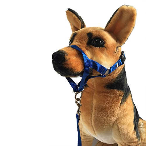Charmsong Dog Head Collar Halter 3 Sizes 3 Colours No-Pull Painless Gentle Control XL Blue by Charmsong