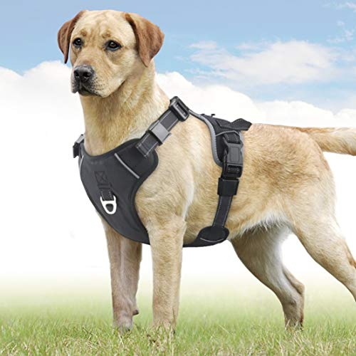Idepet Dog Harness Vest with Handle,No-Pull Pet Vest Harness Safety Seat Belt Trip Daily Use Adjustable Reflective Breathable Lightweight Dog Harness for Small Medium Large Dogs (L)