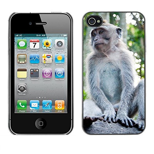 Just Phone Cover Hard plastica indietro Case Custodie Cover pelle protettiva Per // M00140021 Animaux Monkey Forest // Apple iPhone 4 4S 4G