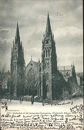 Cathedral of the Immaculate Conception. Catholic Albany, New York Original Vintage Postcard ()