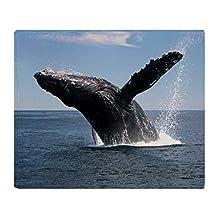 "CafePress - Adult Humpback Whale Breaching - Soft Fleece Throw Blanket, 50""x60"" Stadium Blanket"