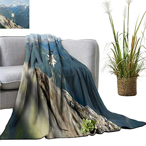 YOYI Home Fashion Blanket Edelweiss Fly bee Lightweight Blankets for Couch Bed Sofa 60