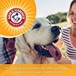 Arm & Hammer Dog Dental Care Tartar Control Kit for Dogs 12
