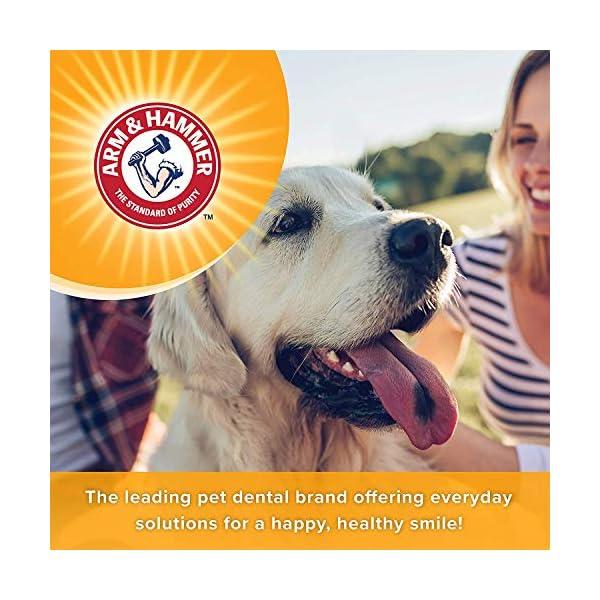 Arm & Hammer Dog Dental Care Tartar Control Kit for Dogs 5