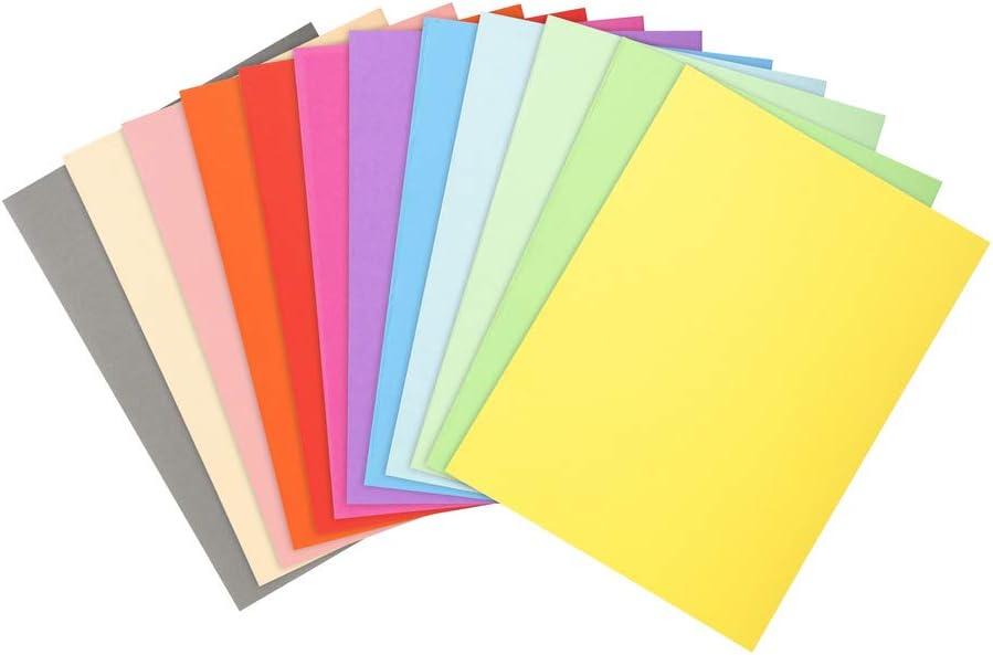 Exacompta 410000E - Lote de 100 Subcarpetas Forever® 10, Colores Surtidos