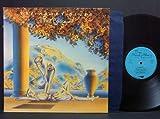 The Present [Vinyl LP]