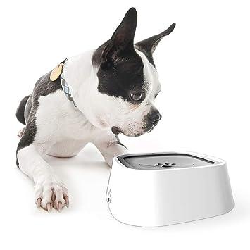L&XY Dispensador de Agua para Mascotas Los Perros no se mojan la Boca - Dispositivo de