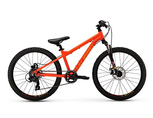 Raleigh Bikes Kids Tokul Mountain Bike, Orange, One Size