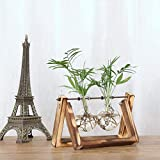 Fishinnen Home Decoration Glass Vase with Stand, Creative Hydroponic Plant Trans Vase Wooden Frame Home Decoration - Two Glass Pot Retro Wooden Stand. Vase. Bud Vase